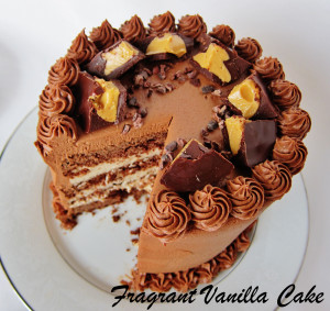 Peanut Butter Cake 4