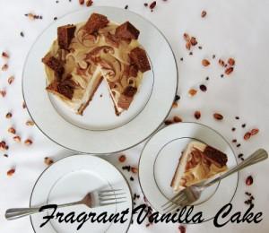 Peanut Butter Mocha Cake 9 (500x434)