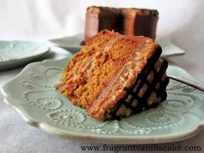 Samoa Cake 2