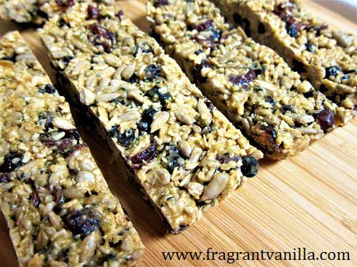 Raw Seed and Fruit Energy Bars
